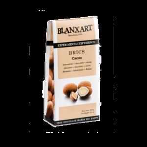 Estuche Brics de cacao (100g)